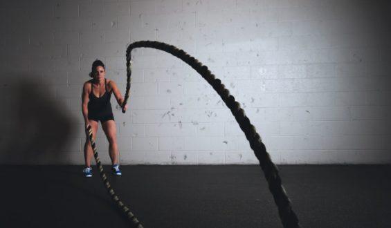 Białko – wpływ na budowę masy mięśniowej